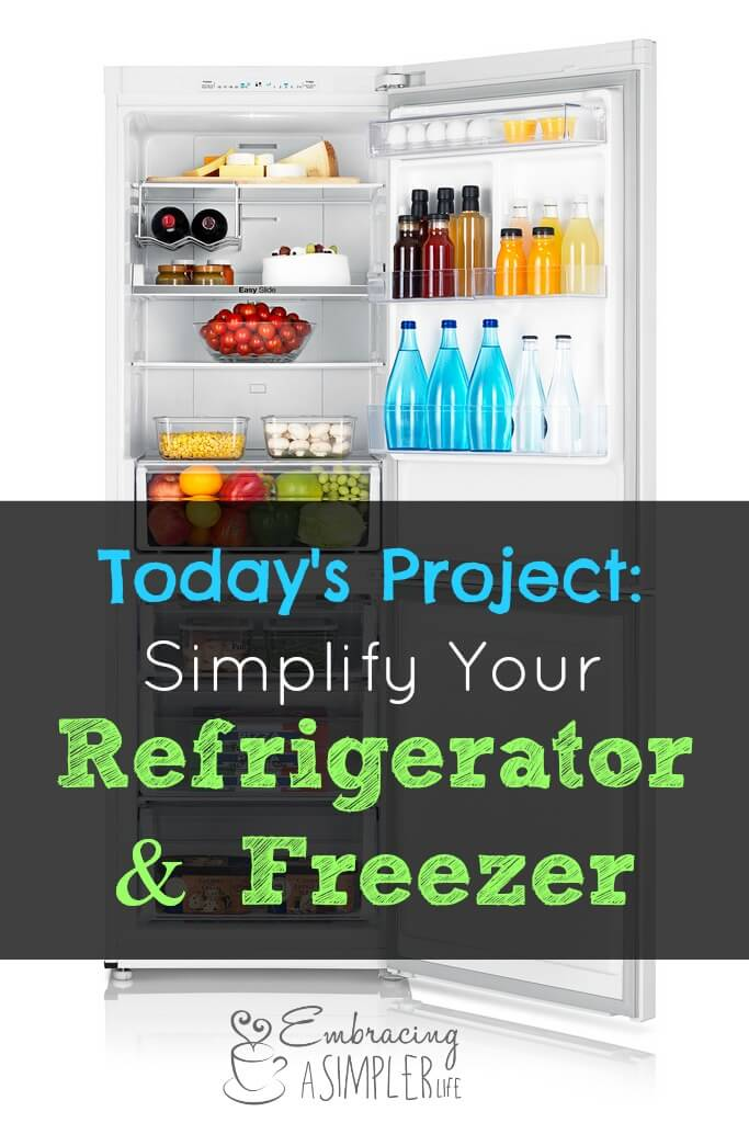 today's project_refridgerator and freezer