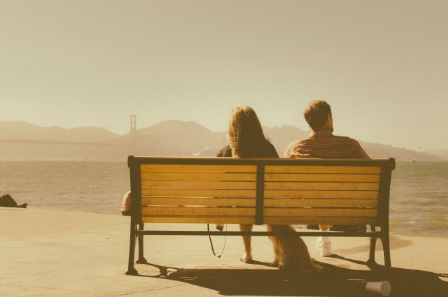 animal-bench-couple-717