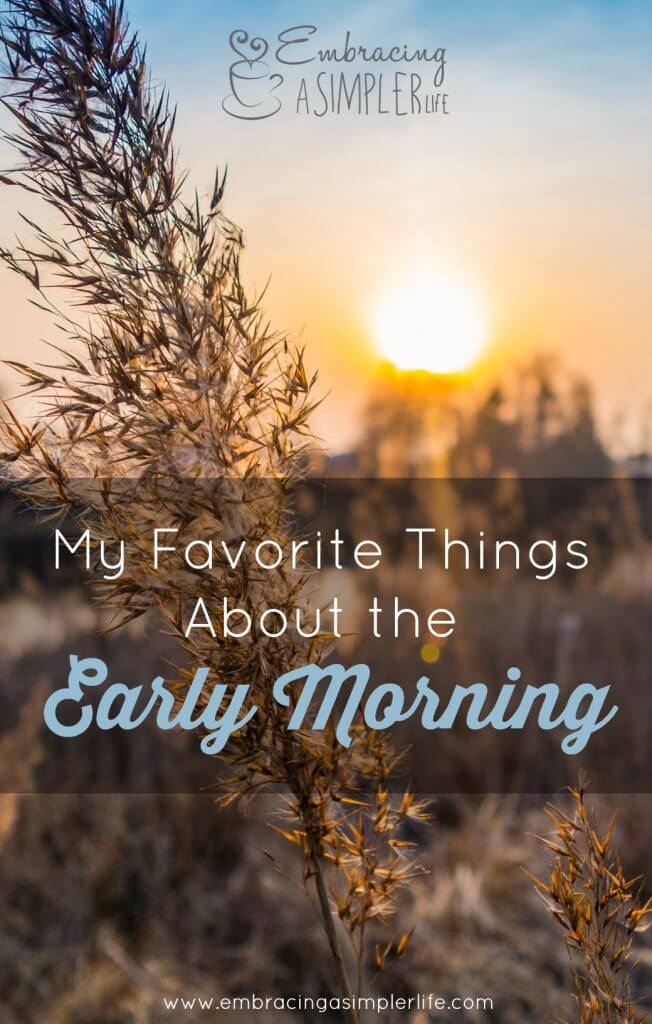 my favorite things about the early morning